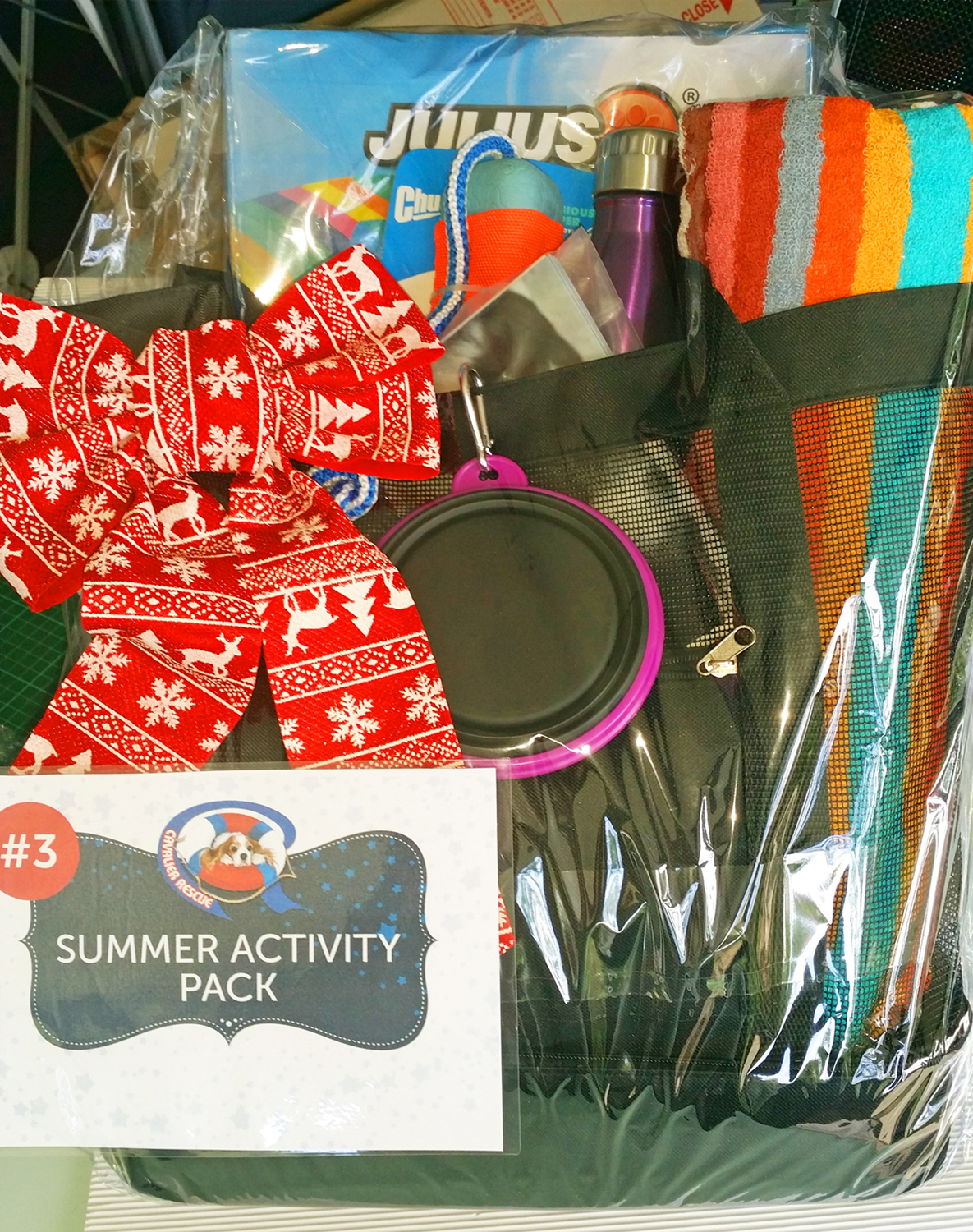 Cavalier Rescue Qld - Christmas Raffle 2016 - Summer Activity Prize Pack