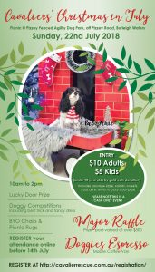 Cavalier Rescue Qld Christmas in July Picnic in the Park 2018 event