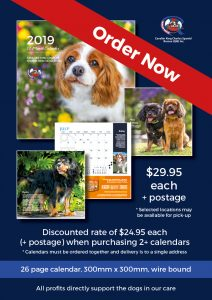 Cavalier Rescue Qld 2019 Fundraising Calendar is on sale now
